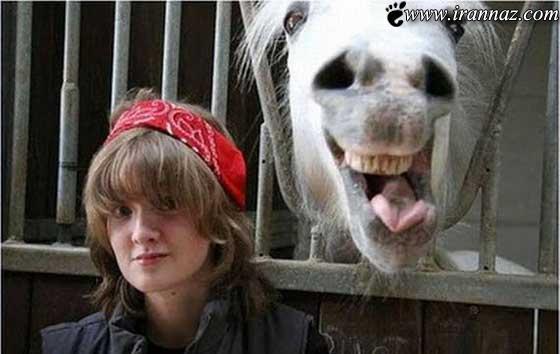 عکس های خنده دار و بسیار جالب از سرتا سر جهان