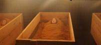 حمام کردن این زنان در خاک اره برای زیبایی بیشتر!!