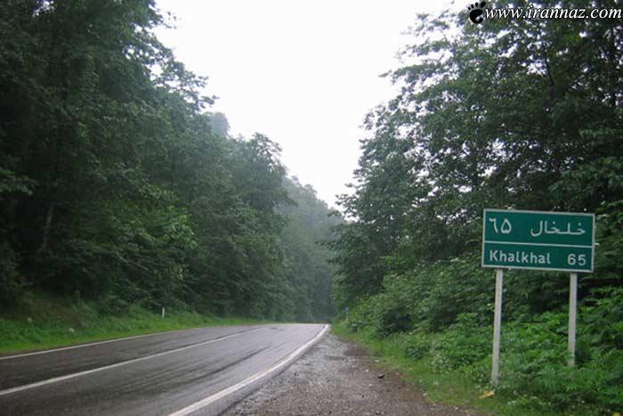 لذت بودن با رویایی ترین جاده جنگلی کشور(تصاویر)