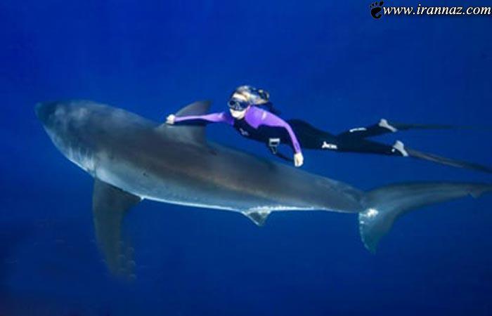 شجاعت باورنکردنی و دیدنی دختری به نام اقیانوس