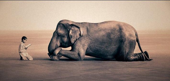 تصاویرشیرین کاریهای بچه ها و حیوانات