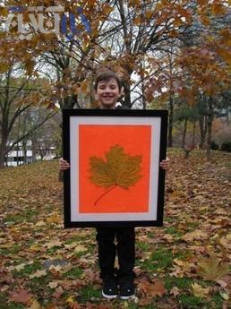 عکس های بزرگترین برگ های دنیا!