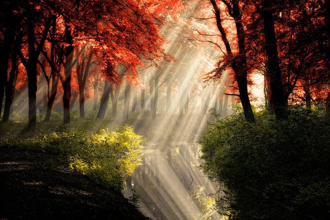 عکسهای بسیار زیبا و دیدنی از طبیعت
