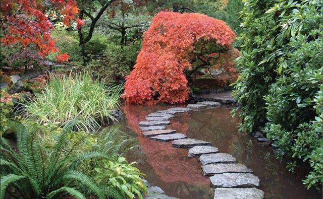 عکس هایی از زیباترین و بزرگترین باغ گل دنیا | www.irannaz.com
