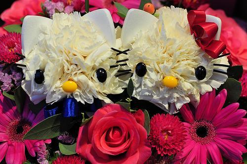 گلهای یک گل فروشی بسیار جالب در ژاپن