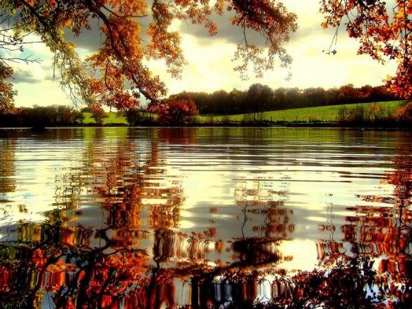 عکسهایی فوق العاده زیبا از طبیعت