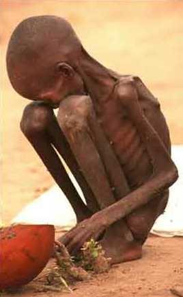 غم انگیزترین عکس تاریخ بشری (فقط گریه نکن)