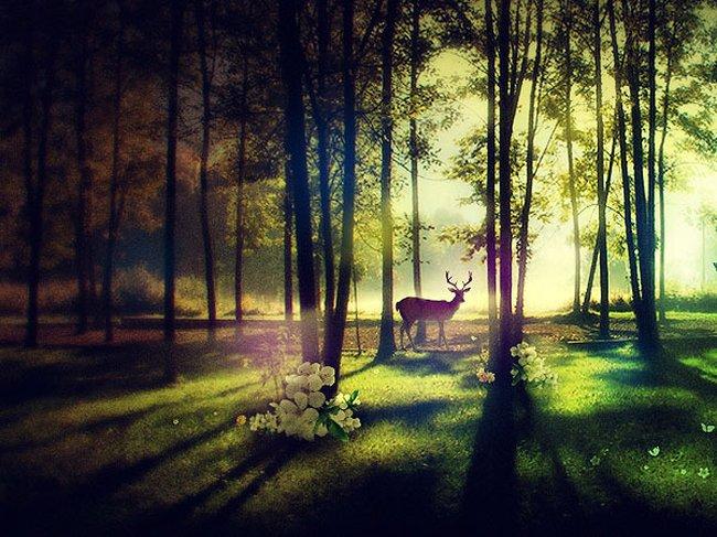 عکسهایی از قدرت بی نظیر خداوند در آفرینش زیبایی