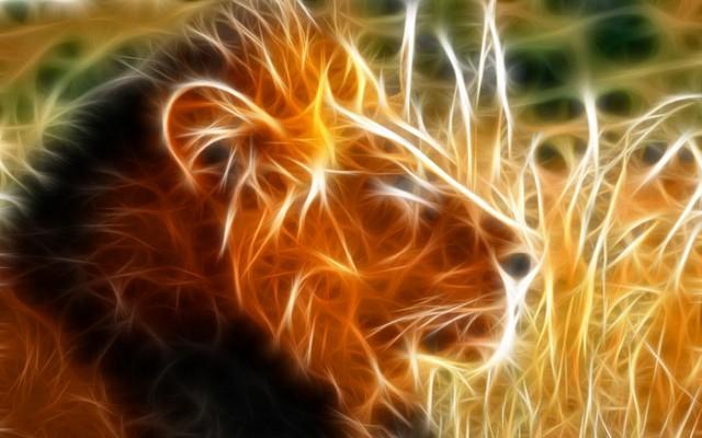 عکس های شگفت انگیر 3 بعدی از حیوانات
