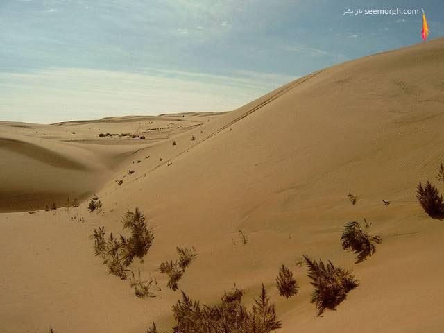 پنج بیابان بسیار زیبای جهان (+عکس ها)