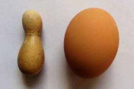 گذاشتن عجیب تریت تخم مرغ دنیا توسط مرغ چینی!!